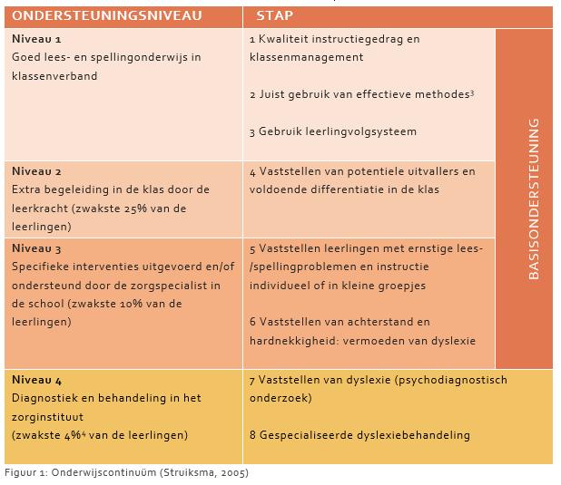 Tabel met uitleg van de 4 ondersteuningsniveaus
